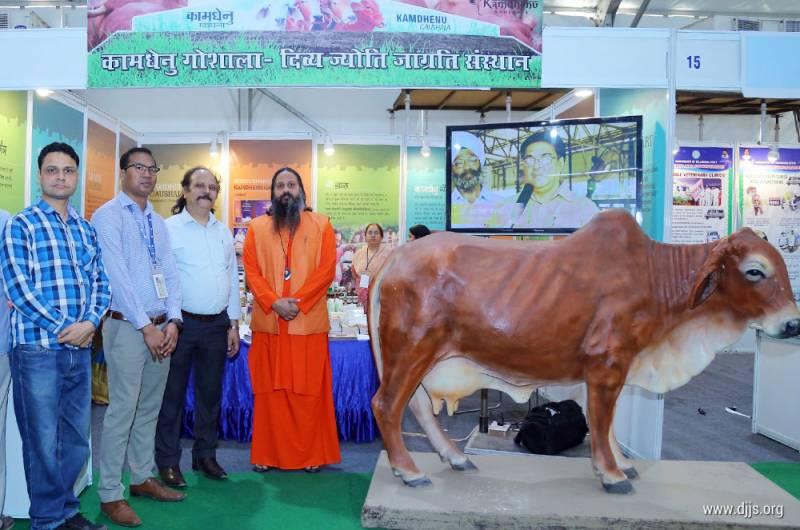 Kamdhenu - Indian Cow Breed Improvement Program of DJJS