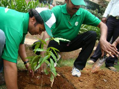 tree plantation drive santulan initiatives tree plantation drive