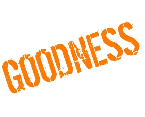 Goodness: A precious ornament of your persona djjs blog