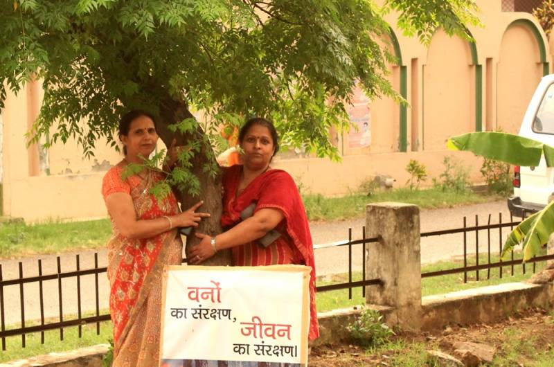 DJJS Meerut sowing the saplings of hope for a cleaner & greener future